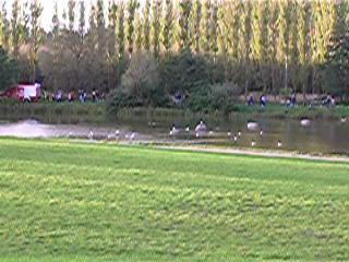 Lampion-Rundgang um den Teich im Fischerdorf